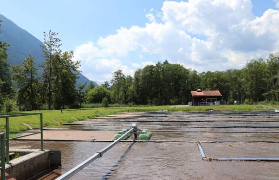 Kläranlagenoptimierung: Sauberes Wasser muss nicht teuer sein